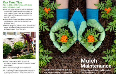 Proper Mulch Application Procedure Brochure